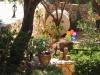 pasha-garden-20