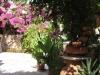 pasha-garden-5