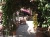 pasha-garden-50
