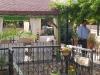 pasha-garden-9